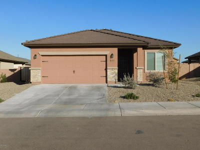 Marana Single Family Home For Sale: 11272 W Artifact Quarry Drive