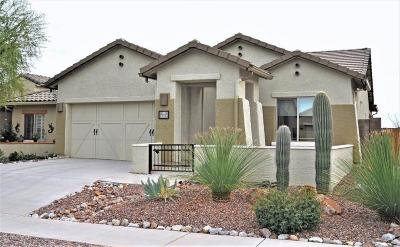 Oro Valley Single Family Home Active Contingent: 1111 W Montelupo Drive