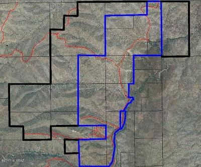 Pima County Residential Lots & Land For Sale: Carpenter Springs Road