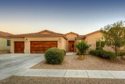 Marana Single Family Home Active Contingent: 11332 N Adobe Village Place