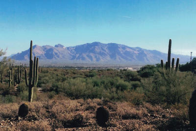 Tucson Residential Lots & Land For Sale: W Camino Nuestro