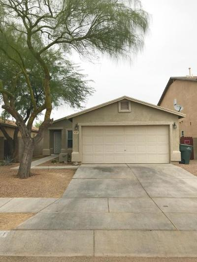 Pima County, Pinal County Single Family Home For Sale: 6121 S Earp Wash Lane