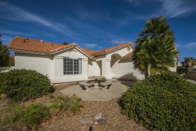 Saddlebrooke Single Family Home For Sale: 65560 E Canyon Drive