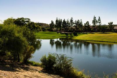 Tucson Single Family Home For Sale: 37460 S Desert Star Drive