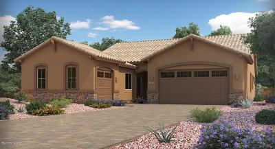 Marana Single Family Home For Sale: 14334 N Whitehorn Place