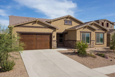 Pima County Single Family Home Active Contingent: 10968 N Gemma Avenue