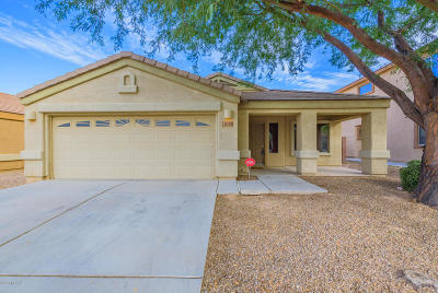 Pima County, Pinal County Single Family Home For Sale: 4019 E Shadow Branch Dr