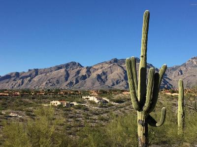 Tucson Residential Lots & Land For Sale: 4160 N Painted Quail Place #81