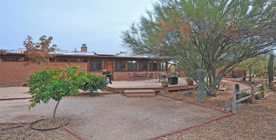 Tucson Single Family Home For Sale: 9437 N Camino Del Fierro