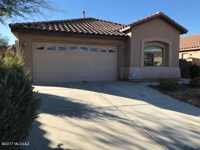 Tucson Single Family Home For Sale: 7528 S Hinds Willow Way