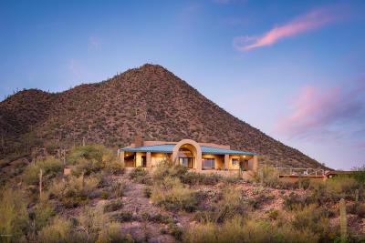 Pima County Single Family Home For Sale: 661 N Mountain Side Way