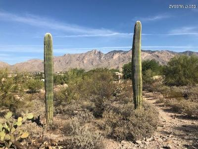 Tucson Residential Lots & Land For Sale: 5406 N Placita Gato Montes #22