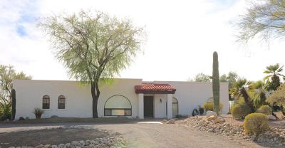 Tucson Single Family Home For Sale: 5030 N Stonehouse Place