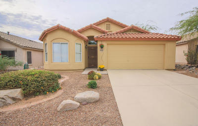 Marana Single Family Home For Sale: 12695 N Blue Sage Drive