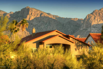 Oro Valley Single Family Home For Sale: 11161 N Broadstone Drive