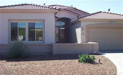 Tucson Single Family Home For Sale: 4858 S Placita Samba