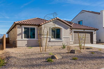 Tucson Single Family Home For Sale: 11045 E Roscommon Place