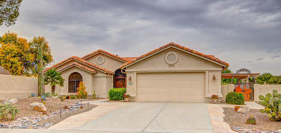 Tucson Single Family Home For Sale: 63736 E High Point Lane