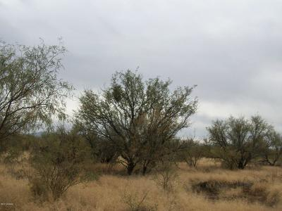 Tucson Residential Lots & Land For Sale: 16315 W Quinlin Trail