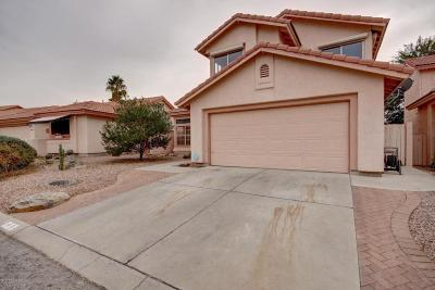 Pima County Single Family Home For Sale: 3480 W Sky Ridge Loop