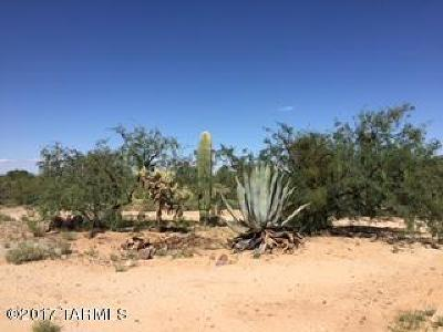 Tucson Residential Lots & Land For Sale: 16401 Cowboy Place W