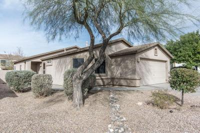 Tucson Single Family Home For Sale: 10157 E Desert Paradise