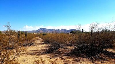 Tucson Residential Lots & Land For Sale: 4900 N Sanders Road #34