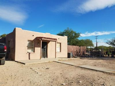 Tucson Single Family Home For Sale: 4031 S 16th Avenue
