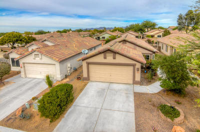 Pima County Single Family Home For Sale: 2676 W Catalina View Drive