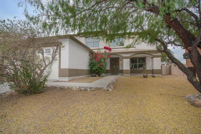 Pima County Single Family Home For Sale: 2587 W Calle Senor Roberto