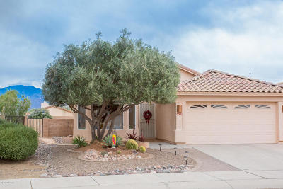 Pima County Single Family Home Active Contingent: 2224 W Catalina View Drive