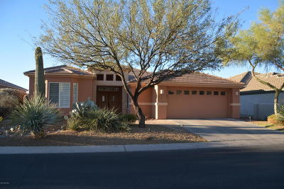 Pima County Single Family Home For Sale: 5181 W Arid Canyon Drive