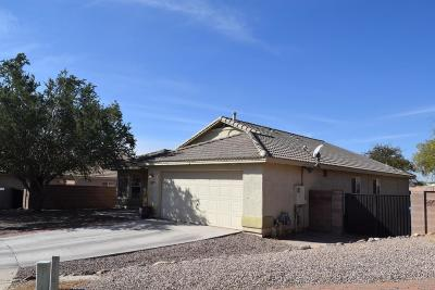 Marana Single Family Home For Sale: 12969 N Chief Butte Place