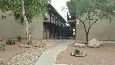 Tucson Residential Income For Sale: 3288 N Geronimo Avenue