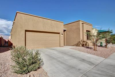 Tucson Single Family Home For Sale: 8916 E Wright School Loop