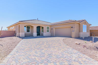 Marana Single Family Home For Sale: 7195 W Secret Bluff Pass W
