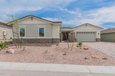 Marana Single Family Home For Sale: 7405 W Cactus Flower Pass N
