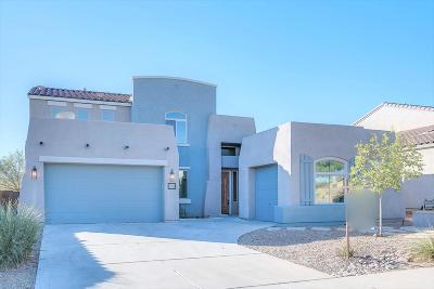 Sahuarita Single Family Home For Sale: 452 E Via Puente De La Lluvia