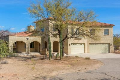 Tucson Single Family Home For Sale: 3860 N Bear Canyon Road