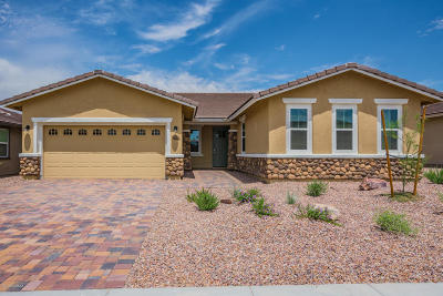 Marana Single Family Home For Sale: 14205 N Golden Barrel Pass W