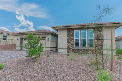 Marana Single Family Home For Sale: 7235 W Secret Bluff Pass N