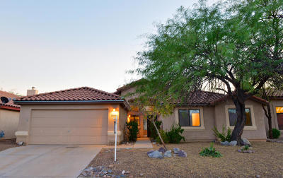 Tucson Single Family Home For Sale: 10680 E Channelside Drive