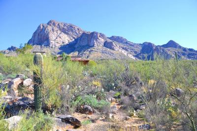 Tucson Residential Lots & Land For Sale: 9800 N La Reserve Place #1