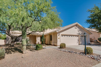 Oro Valley Single Family Home For Sale: 12625 N Pioneer Way