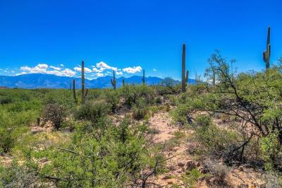 Residential Lots & Land For Sale: 1041 Tortolita Mountain #E