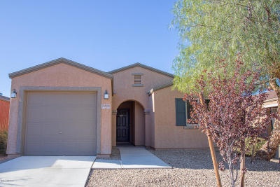 Pima County Single Family Home For Sale: 7028 S Red Maids Drive