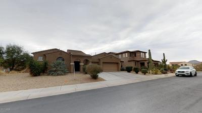 Single Family Home For Sale: 12433 N Paseo Penuela