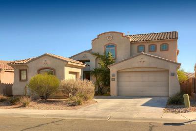 Pima County Single Family Home For Sale: 7874 N Coltrane Lane