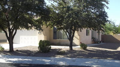 Tucson Single Family Home For Sale: 9263 N Crystal Moon Court