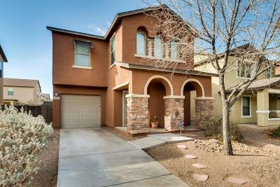 Pima County, Pinal County Single Family Home For Sale: 6974 S Ladys Thumb Lane